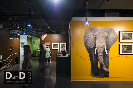 Exhibition photographer Yorkshire, Bradford, Leeds